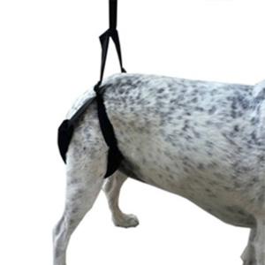Arnes para perros Sport and Vet