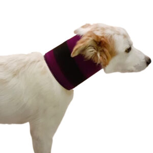 Cuello rígido canino Sport & Vet