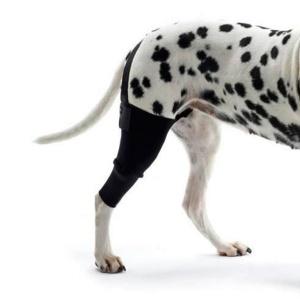 Rodillera para perros en Sport and Vet