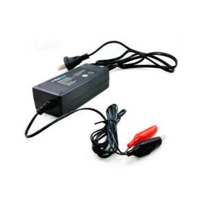 Cargador De Baterías De Gel Inteligente Pronext Carb en GE Photo